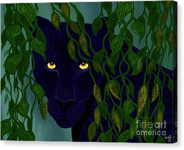 Shadow Of The Rainforest Canvas Print by Nick Gustafson