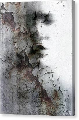 Shadow On A Wall Canvas Print by Gun Legler