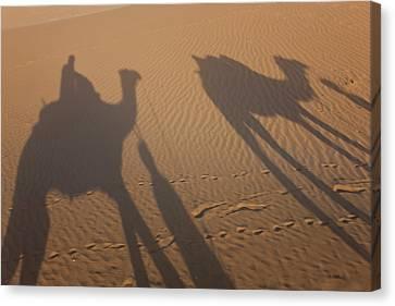 Shadows Of A Camel Train, Thar Desert Canvas Print by Peter Adams