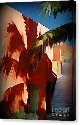 Shadows Of Palm Leaves Canvas Print by John Malone