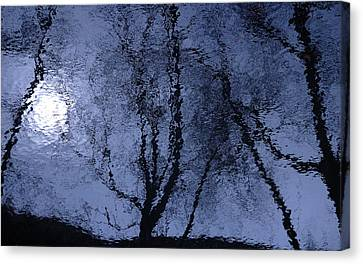 Shadows Of Reality  Canvas Print by Steven Milner