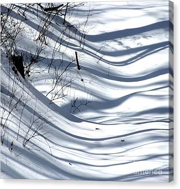 Shadows Reach Canvas Print by Fred  Sheridan