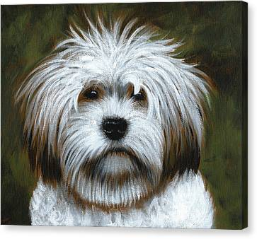 Shaggy ... Dog Art Painting Canvas Print by Amy Giacomelli