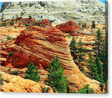 Shaped By The Hands Of Time In Zion Canvas Print by Dan Sproul