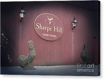 Sharpe Hill Vineyard Sign Canvas Print by John Turek