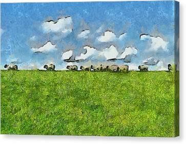 Sheep Herd Canvas Print by Ayse Deniz