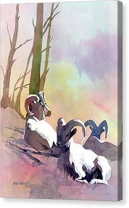 Sheep Shape Canvas Print by Kris Parins