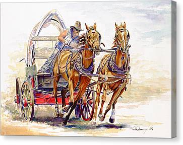 Sheer Horsepower Canvas Print by Don Dane