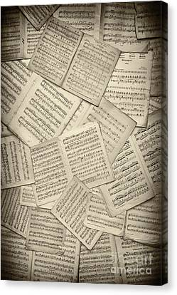 Sheet Music Canvas Print by Tim Gainey