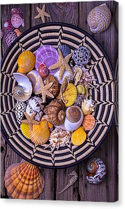 Shell Collecting Canvas Print by Garry Gay