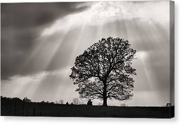 Shining Down Canvas Print by JC Findley