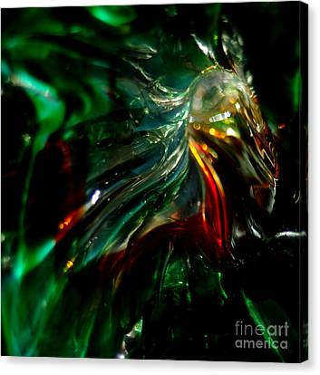 Shining Through The Glass Canvas Print by Kitrina Arbuckle