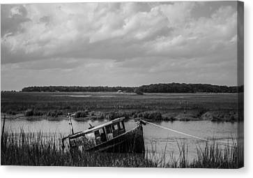 Shipwrecked  Canvas Print by Steven  Taylor