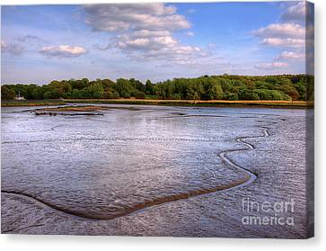 Shore Line Canvas Print by Svetlana Sewell