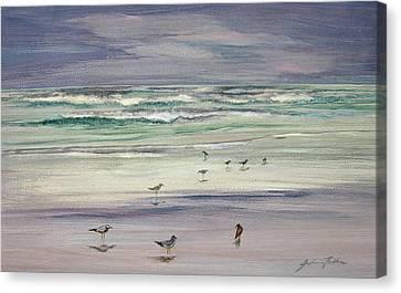 Shoreline Birds IIi Canvas Print by Julianne Felton