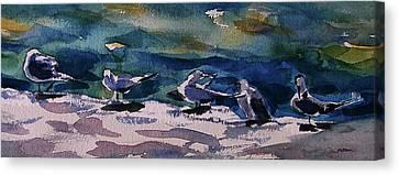 Shoreline Birds Iv Canvas Print by Julianne Felton