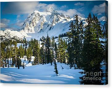 Shuksan Winter Paradise Canvas Print by Inge Johnsson