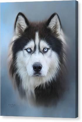 Siberian Husky Canvas Print by Lena Auxier