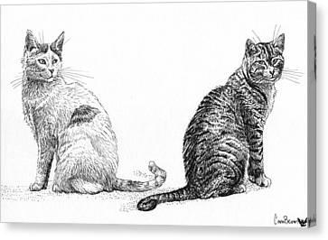 Siblings Canvas Print by Cara Bevan