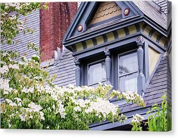Side Window And Dogwoods Canvas Print by Joan Carroll