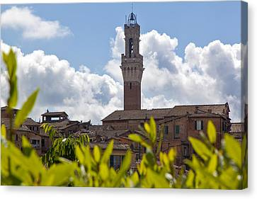 Siena Bell Tower Canvas Print by Adrian Alford