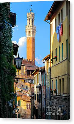 Siena Streets Canvas Print by Inge Johnsson