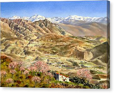 Sierra Nevada With Almond Blossom Canvas Print by Margaret Merry