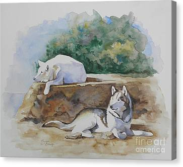Siesta Time Canvas Print by Suzanne Schaefer