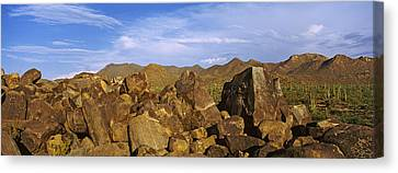 Signal Hill With Petroglyphs, Saguaro Canvas Print by Panoramic Images