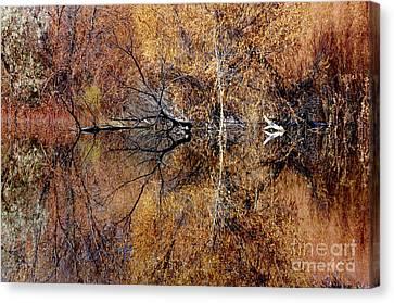 Silent Reflections Canvas Print by Vicki Pelham