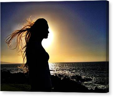 Silhouette At Sunset Canvas Print by Julianne Baltrus