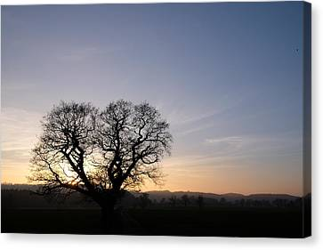 Silhouette Canvas Print by Mark Severn