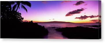 Silhouette Of Palm Trees At Dusk, Maui Canvas Print by Panoramic Images