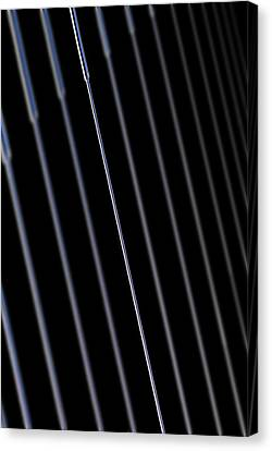 Silica Nano-wire Research Canvas Print by Science Photo Library
