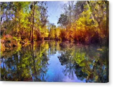 Silver River Colors Canvas Print by Christine Till