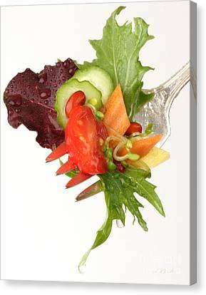 Silver Salad Fork Canvas Print by Iris Richardson