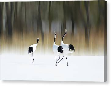 Sing A Song Of Love Canvas Print by Ikuo Iga