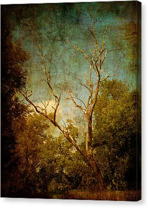 Sing No Sad Songs For Me Canvas Print by Roman Solar