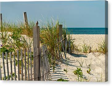 Singer At The Shore Canvas Print by Michelle Wiarda