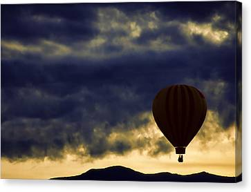 Single Ascension Canvas Print by Carol Leigh