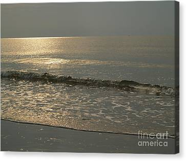 Single Breaker At Dawn On Hunting Island  Canvas Print by Anna Lisa Yoder