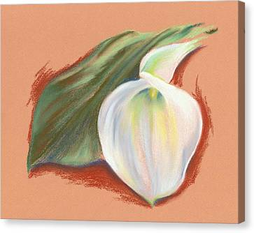 Single Calla Lily And Leaf Canvas Print by MM Anderson