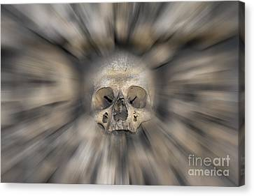 Skull - Fear And Trembling  Canvas Print by Michal Boubin