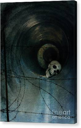 Skull In Drainpipe Canvas Print by Jill Battaglia
