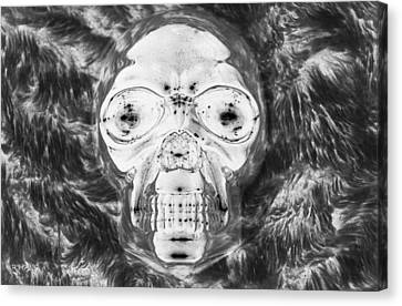 Skull In Negative Canvas Print by Rob Hans