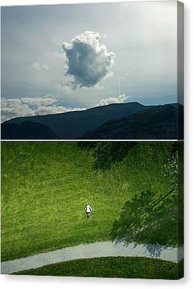 sky Canvas Print by Noahlakcus