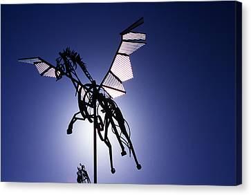 Skyhorse Canvas Print by Bernard  Barcos