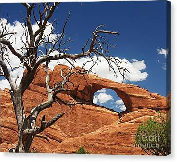 Skyline Arch 2 Canvas Print by Mel Steinhauer