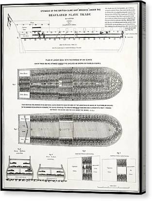 Slave Ship Middle Passage Stowage Diagram  1788 Canvas Print by Daniel Hagerman