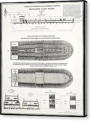 Slave Ship Middle Passage Stowage Diagram  1788 Canvas Print by Daniel Hagerman